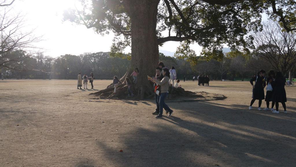 熊本城の広場で遊ぶ人達。熊本城の敷地内は重要なコミュニケーションの場所になっていた