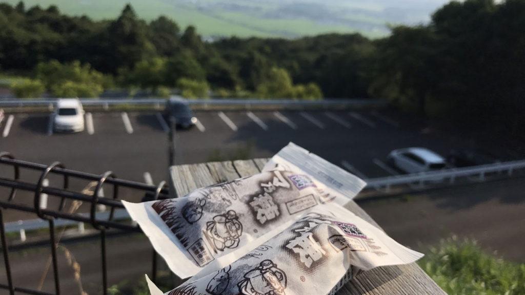 筑波山神社の入口前の売店で買ったかりんとう饅頭!