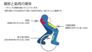 ペダリング時の適した筋肉
