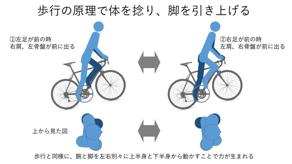 歩行時同様に左右別々の腕と足を出し体をねじってパワーを出す