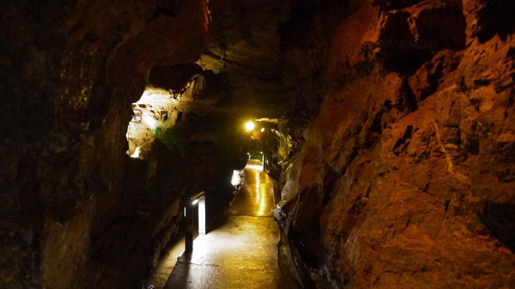 鍾乳洞内は完全に洞窟です。入り口にはコウモリもいます